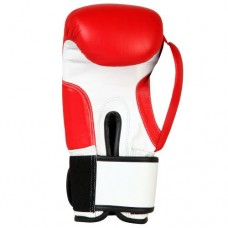 Boxing Gloves Training